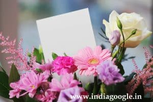 Love proposal Ideas | Love propose letter | Love Letter
