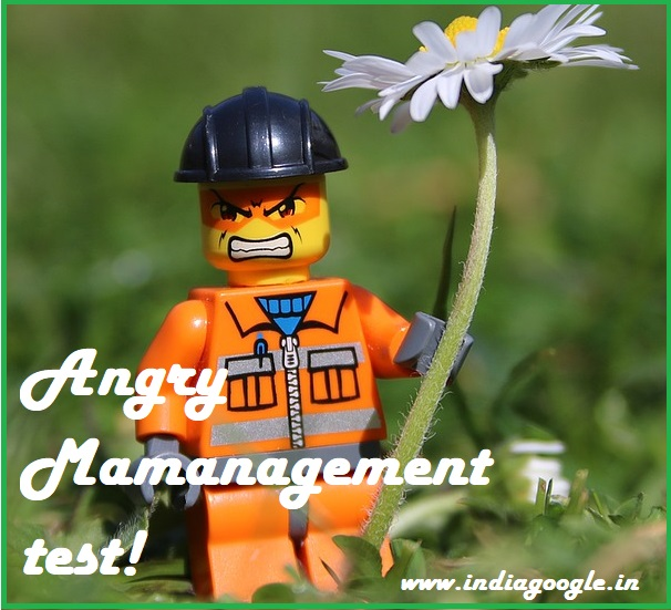 angry-management-test