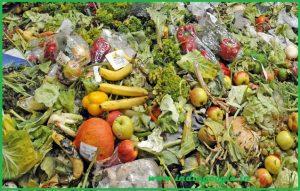 avoid-food-waste